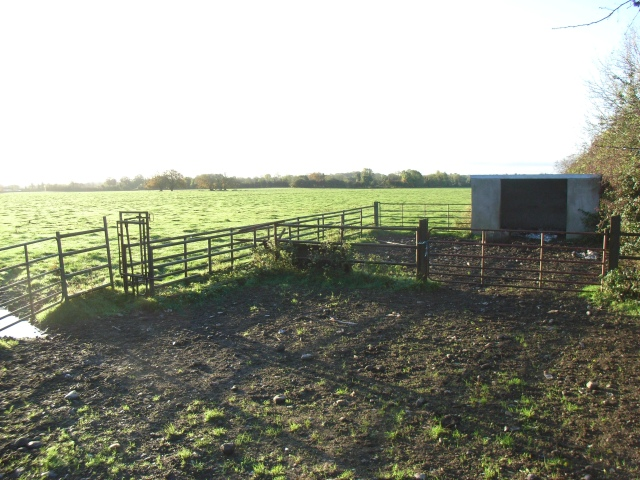 File:Livestock Enclosure Near Robinstown, Co. Meath - geograph.org.uk - 601307.jpg