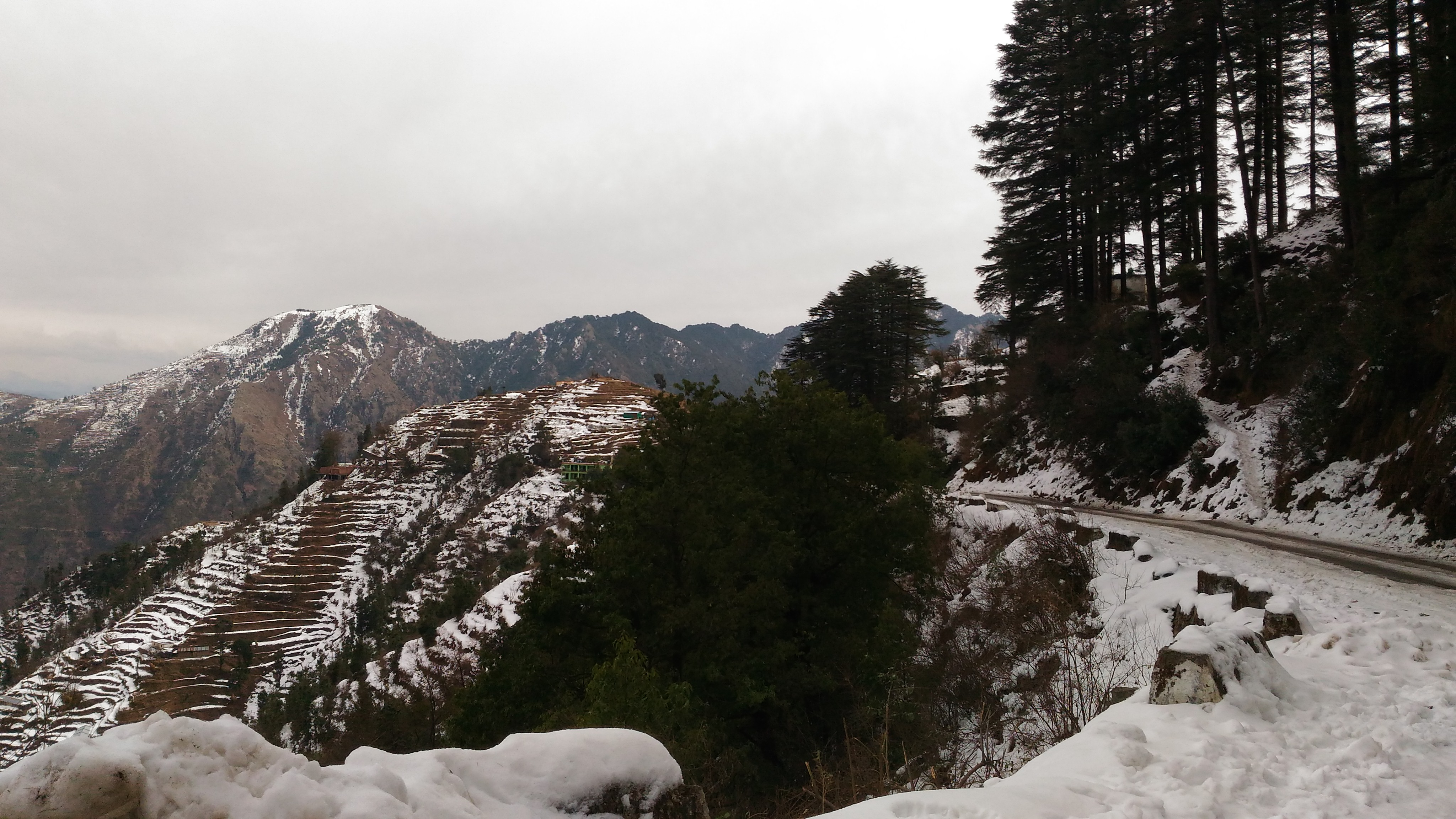 Kanatal Travel Guide 2020-Best Camping & Home Stays 5