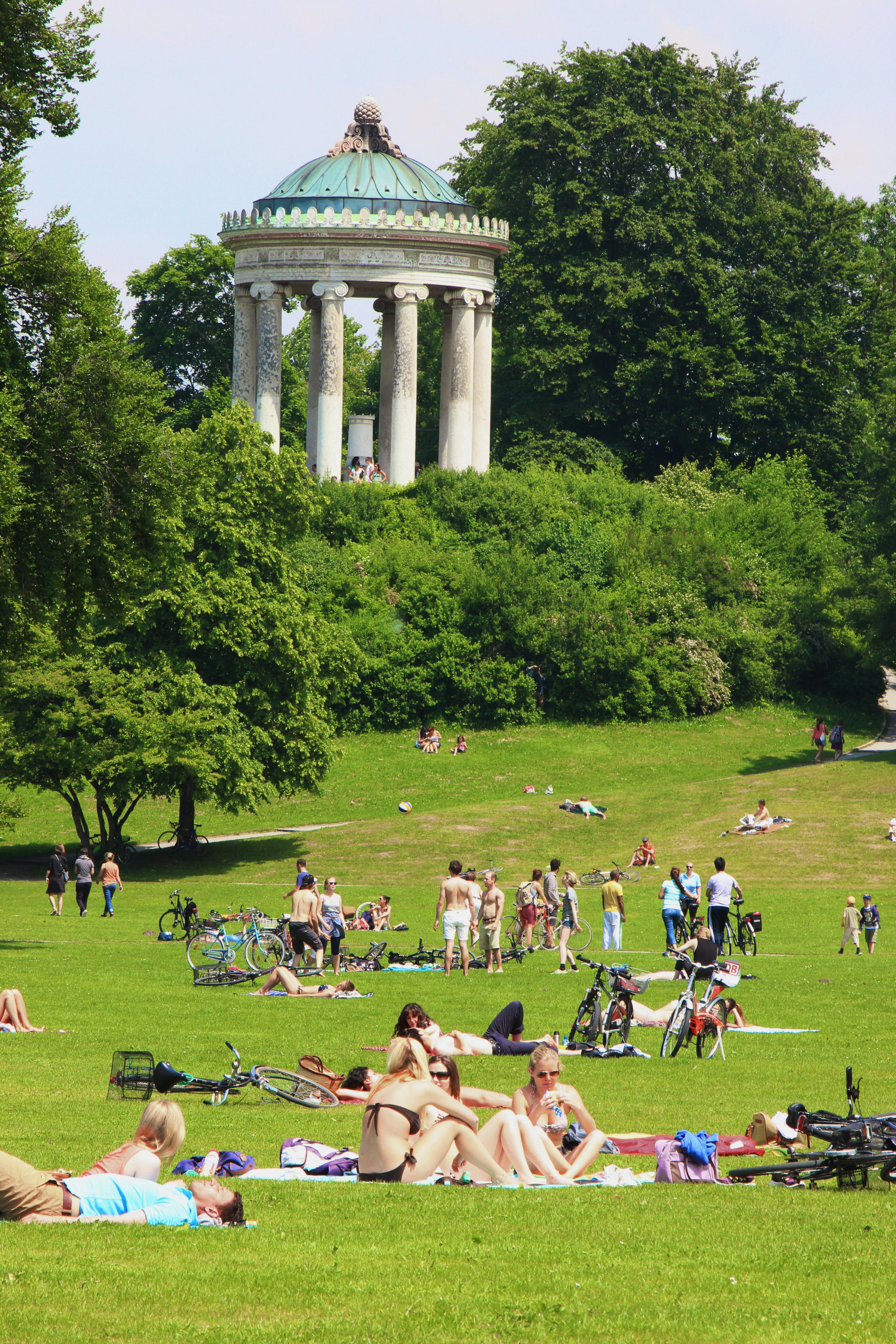 Filemonopteros Englischer Garten Munich Sonnenbadendejpg