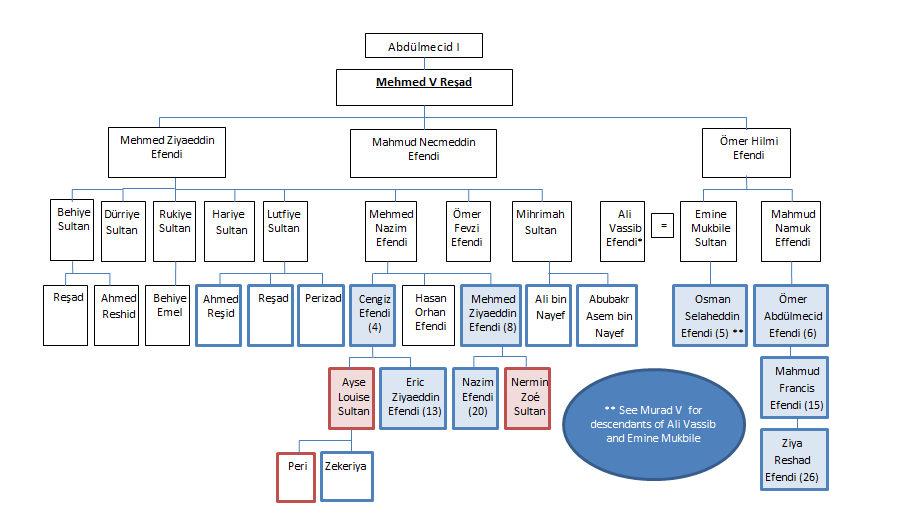 Family tree showing descent from Sultan Mehmed V Reshad
