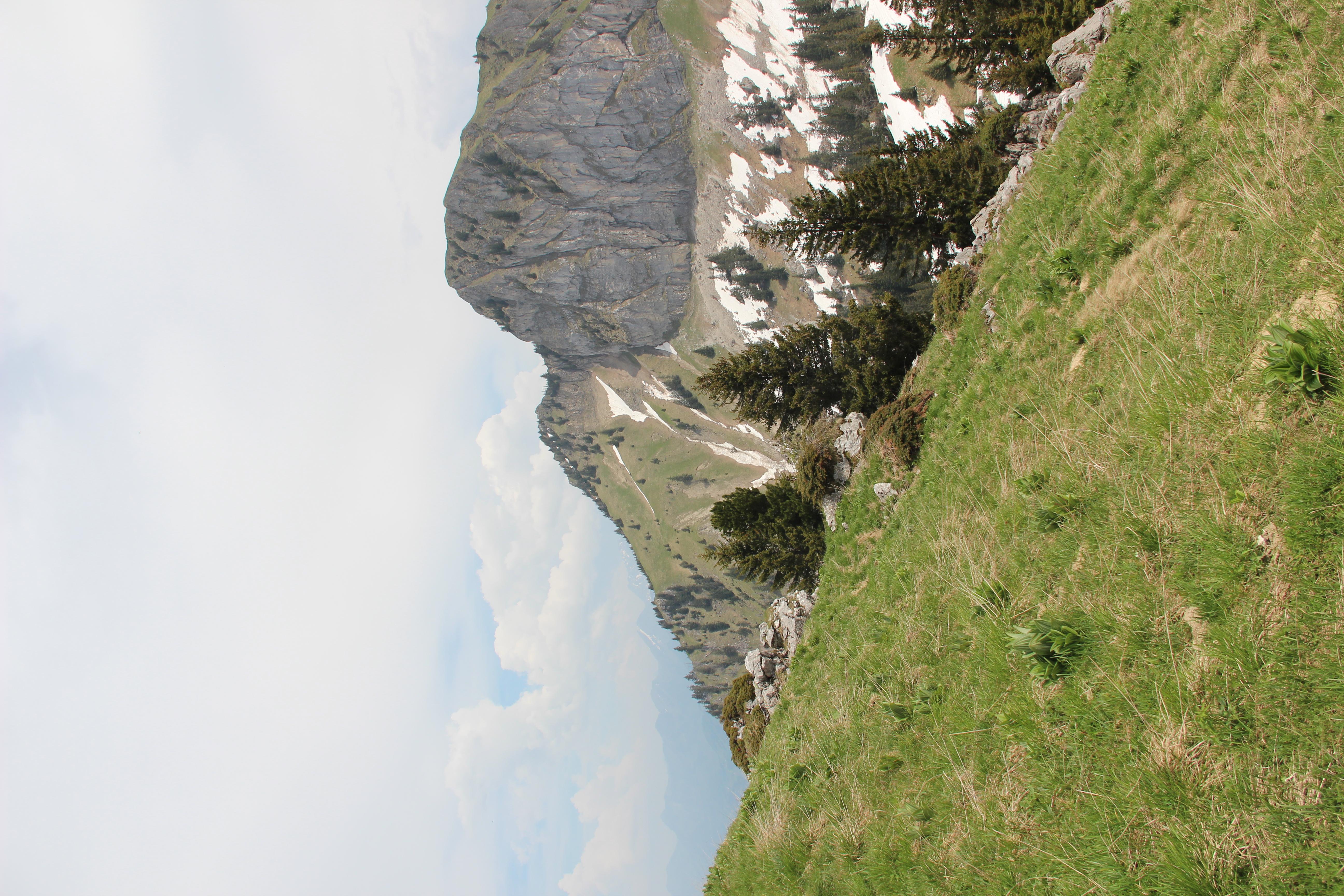 File:Panoramic view near the Station de Jaman - panoramio (11).jpg
