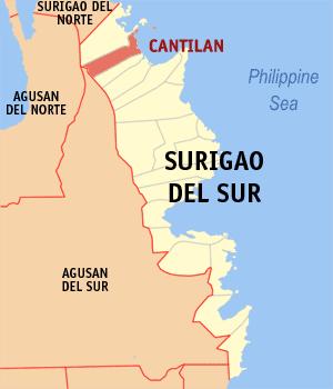 Ph locator surigao del sur cantilan.png