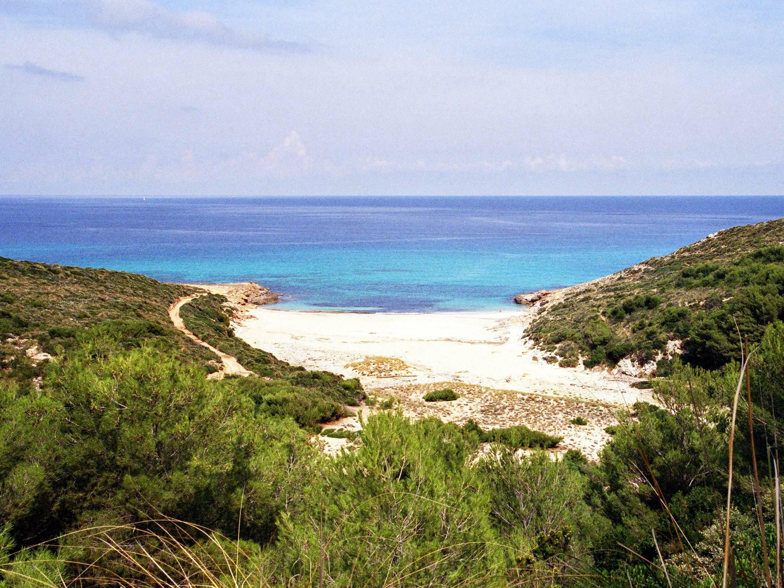 Mallorca Playa De Muro Hotel