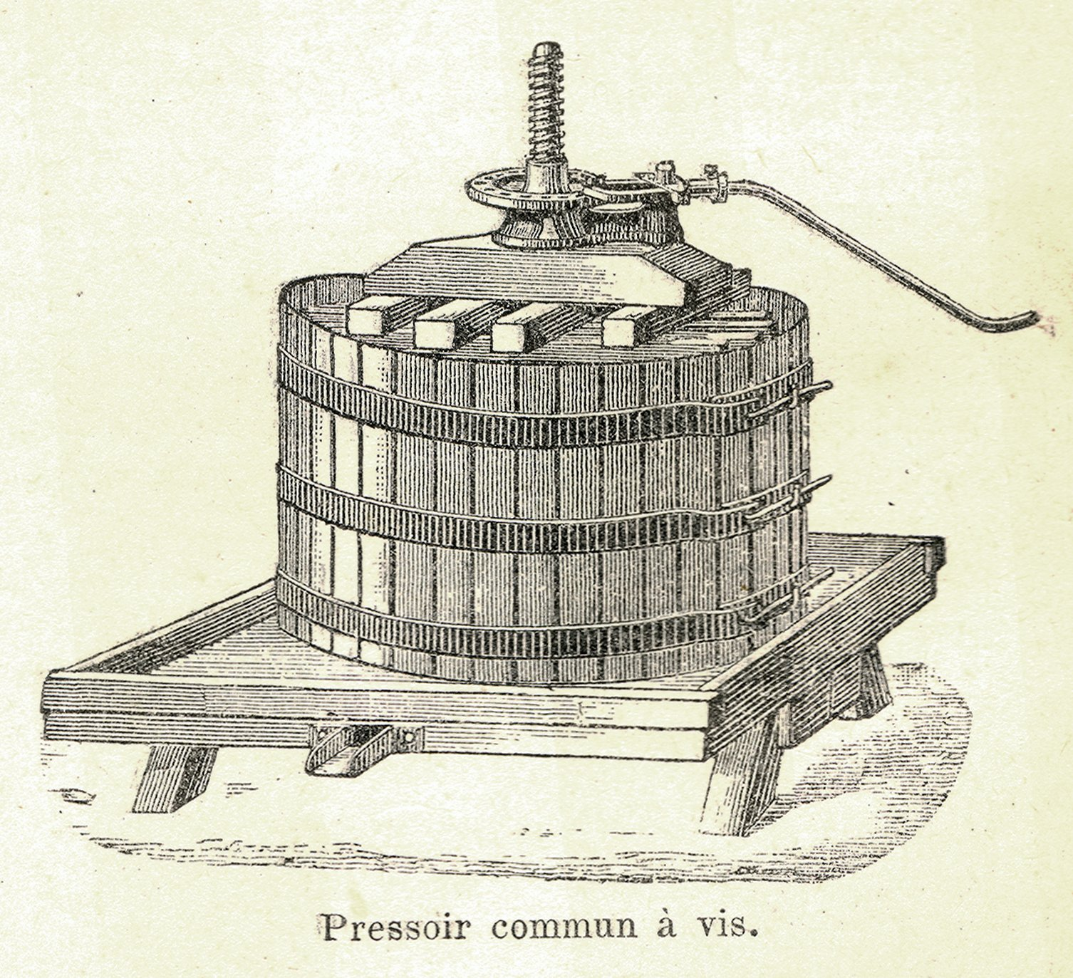 Flow Chart Of Wine Production: Pressing (wine) - Wikipedia,Chart