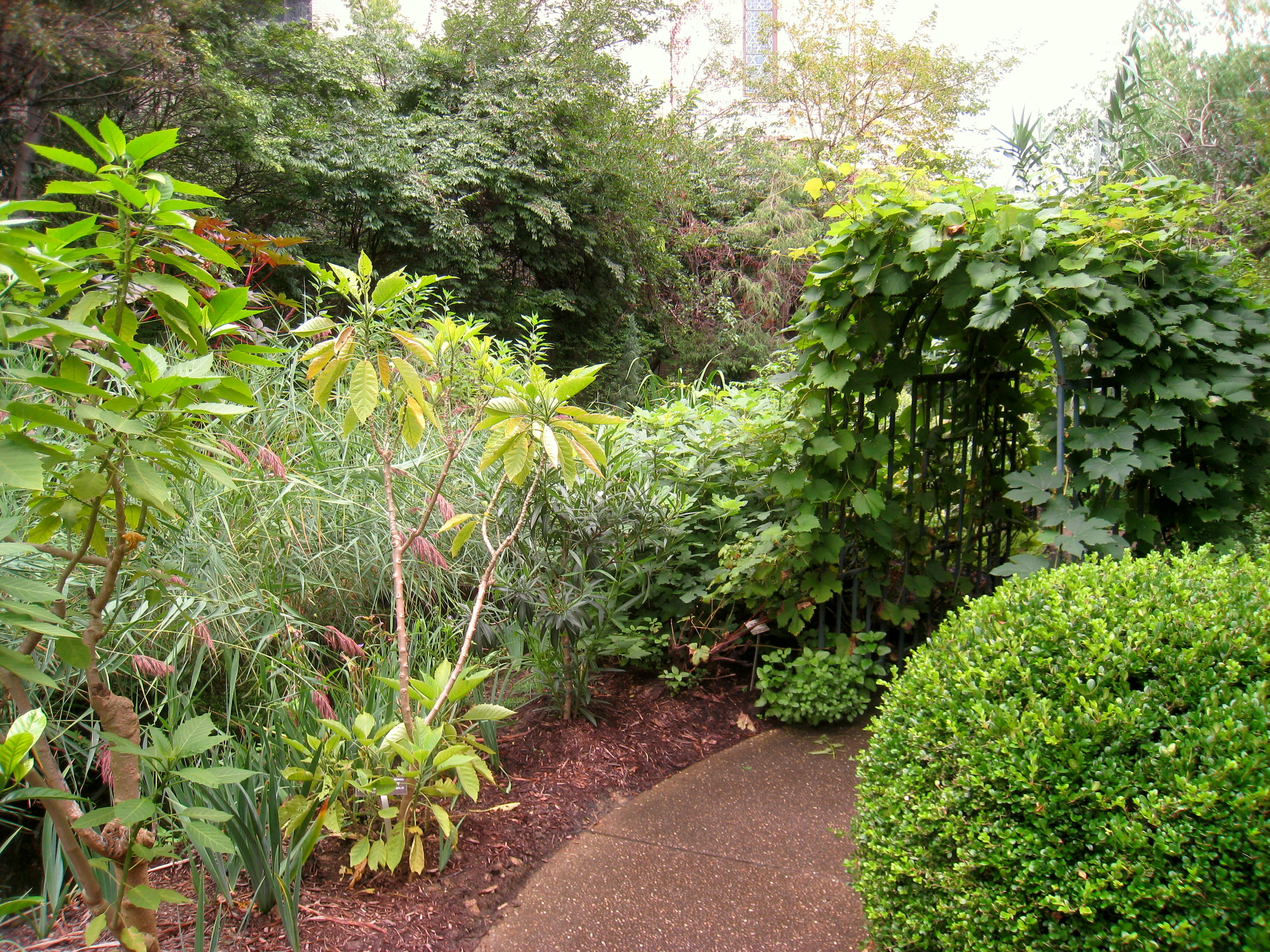 Biblical Botanical Garden Pittsburgh Fasci Garden