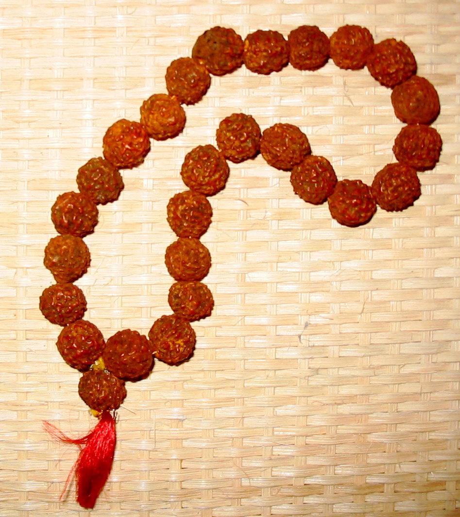 Rudraksha beads.jpg