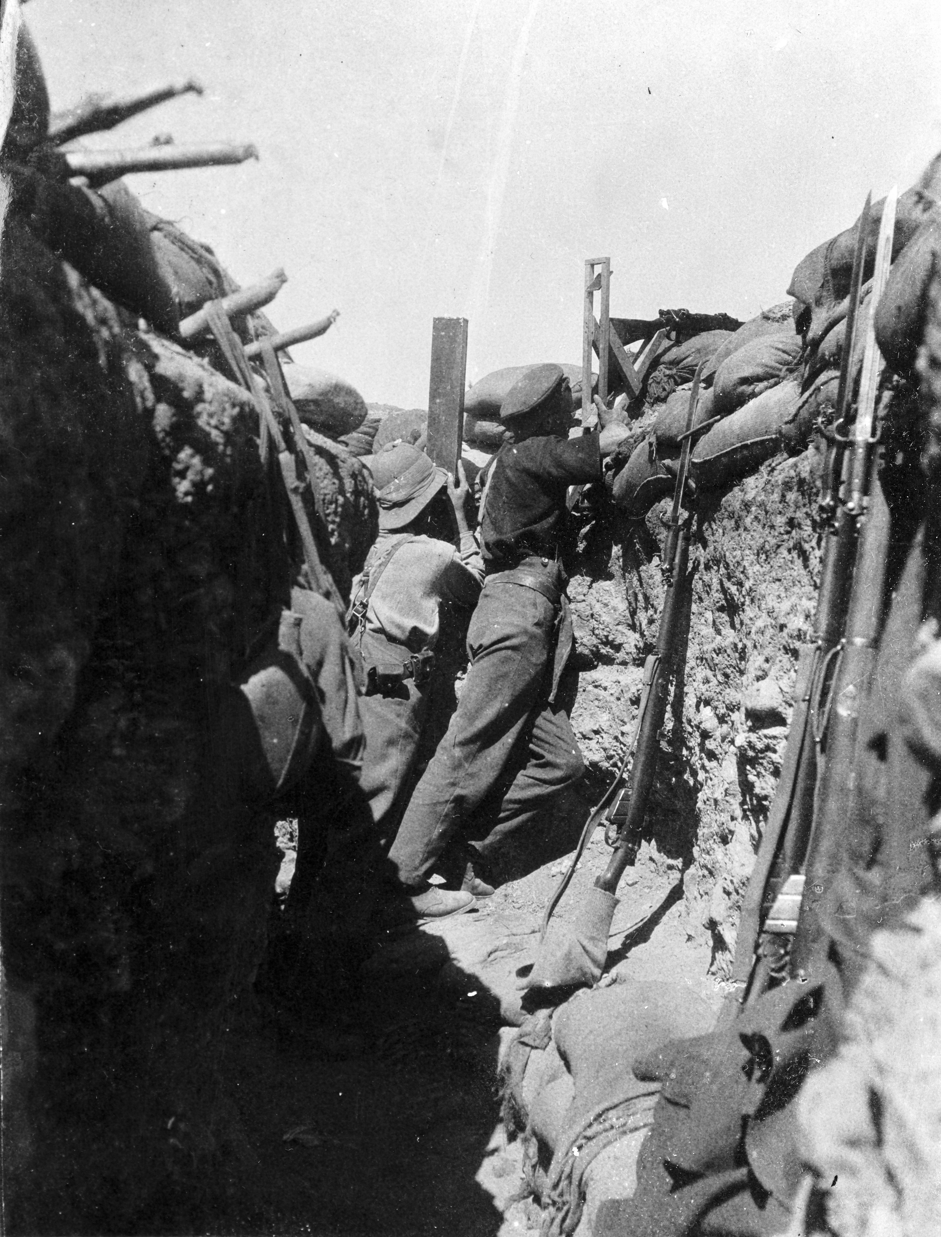 conditions at gallipoli