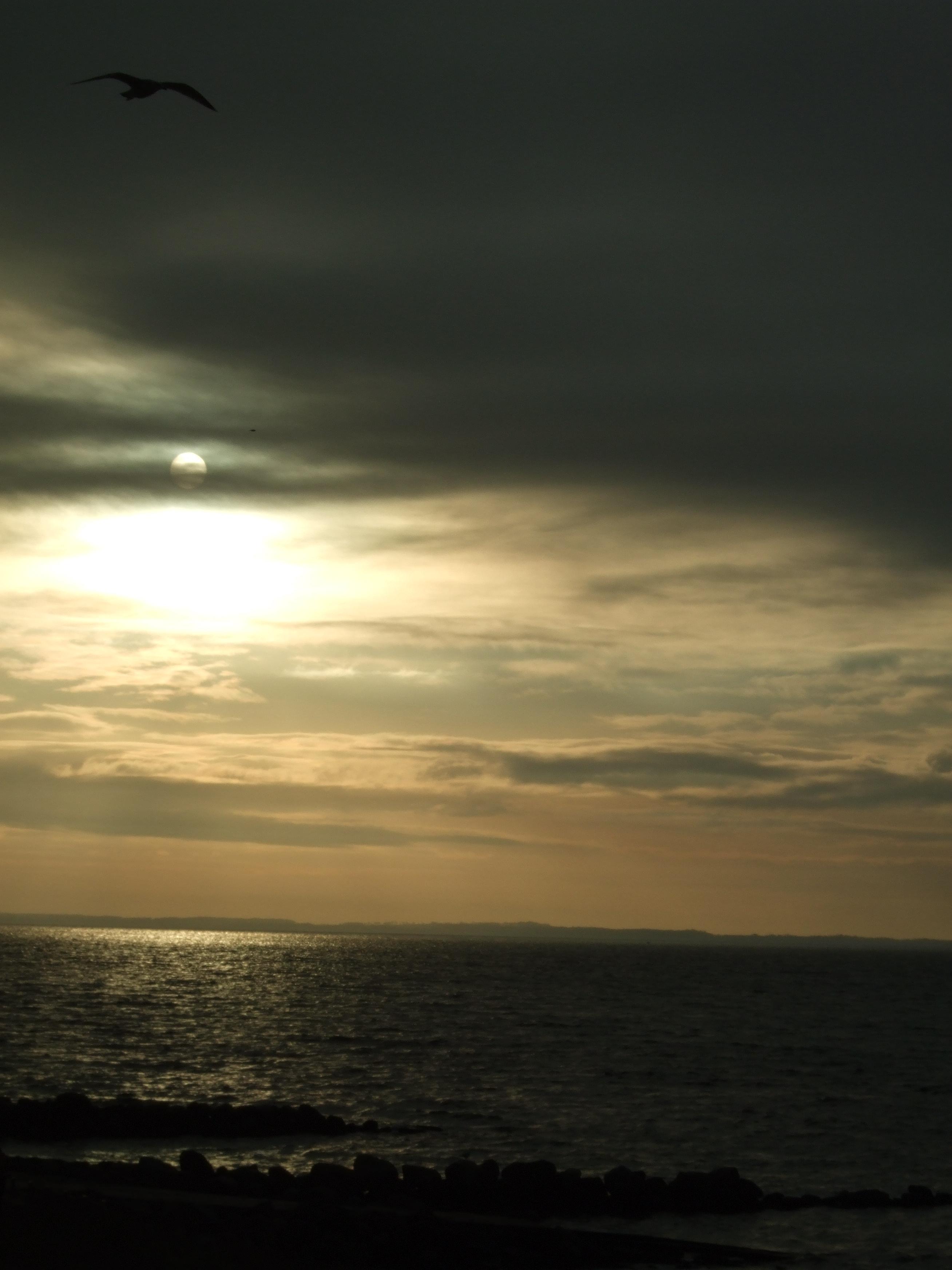 file sun  sea  sky jpg