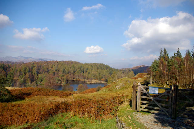 Tarn Hows from the disabled car park - geograph.org.uk - 760357