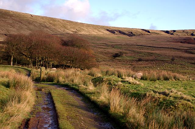 The fells by Trough House Farm - geograph.org.uk - 658235