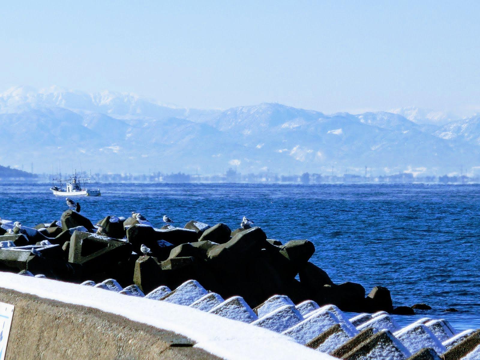 「富山湾」の画像検索結果