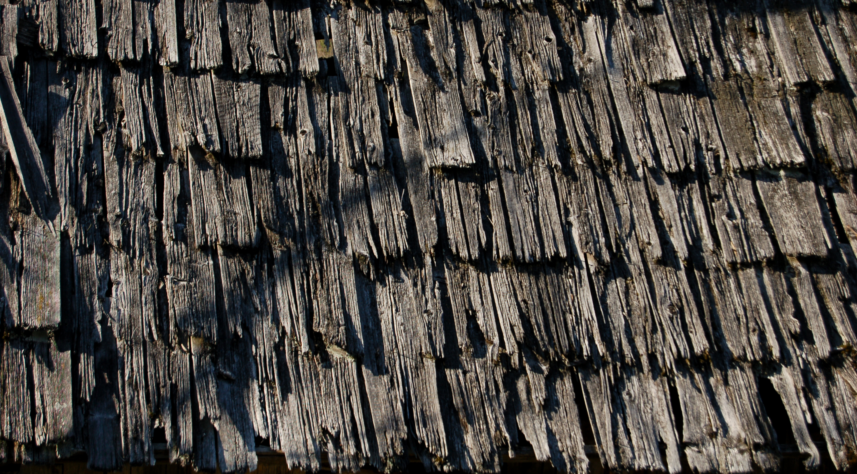 File Weathered Wood Wikimedia Commons
