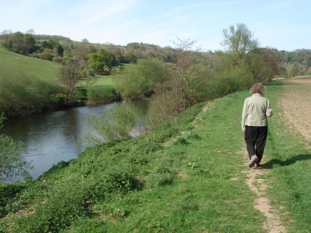 Wye Valley Walk - geograph.org.uk - 454828