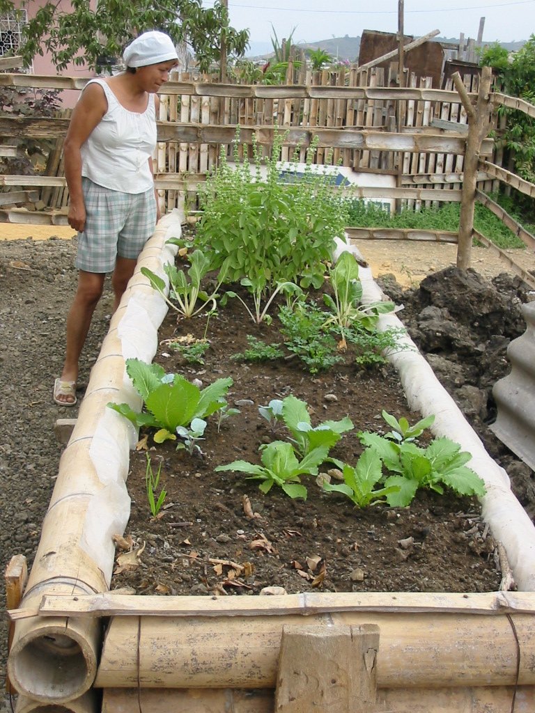 Importancia de crear un huerto en casa conciencia - Pequeno huerto en casa ...