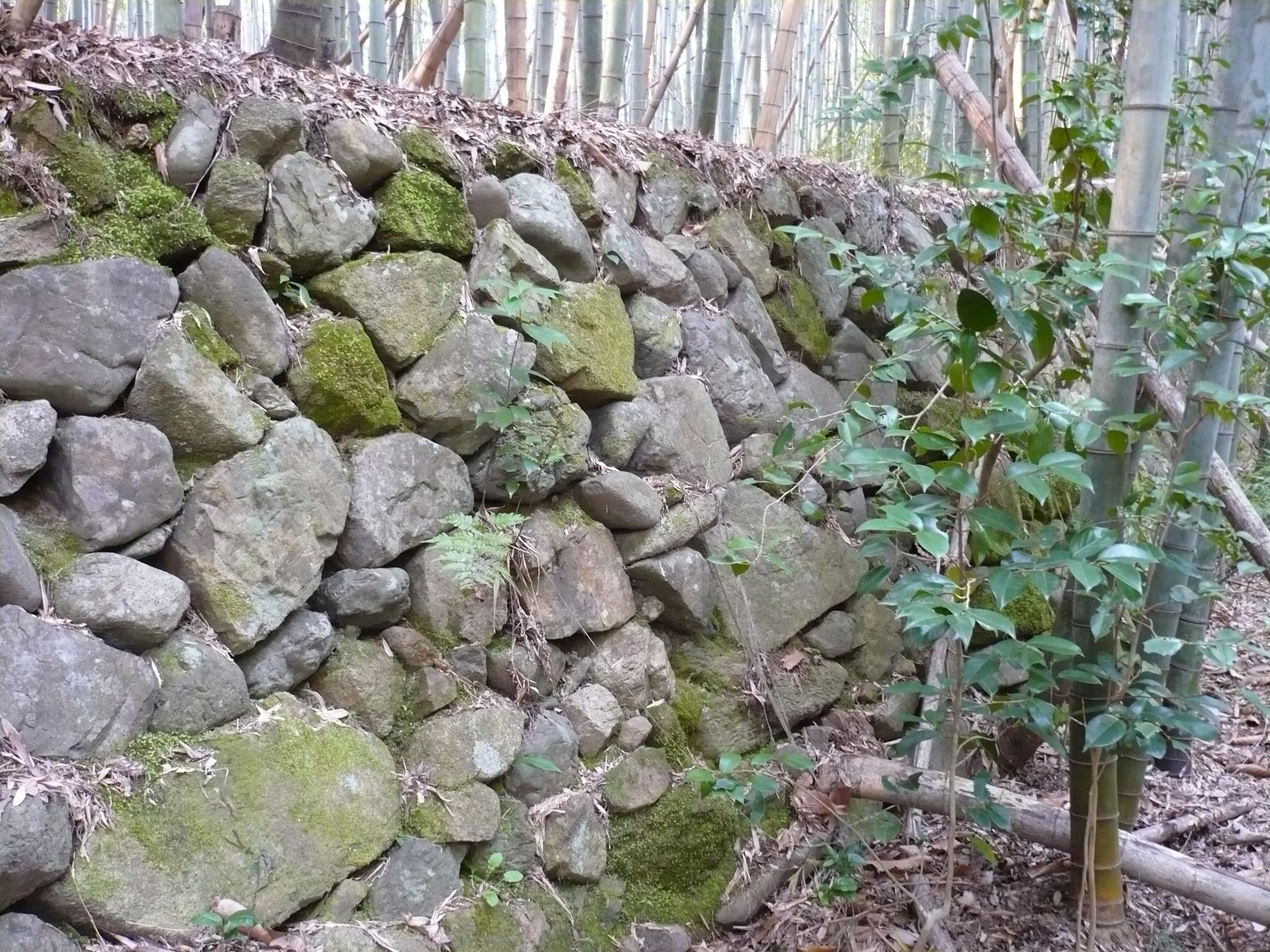ファイル:芥川山城9.jpg