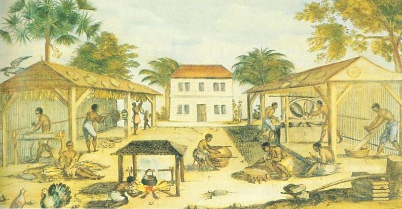 Slaves processing Tobacco in 17th Century Virginia