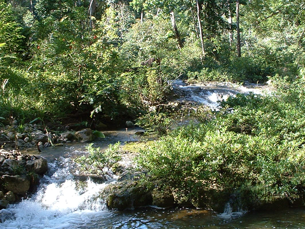 Blue Creek Travel Guide At Wikivoyage