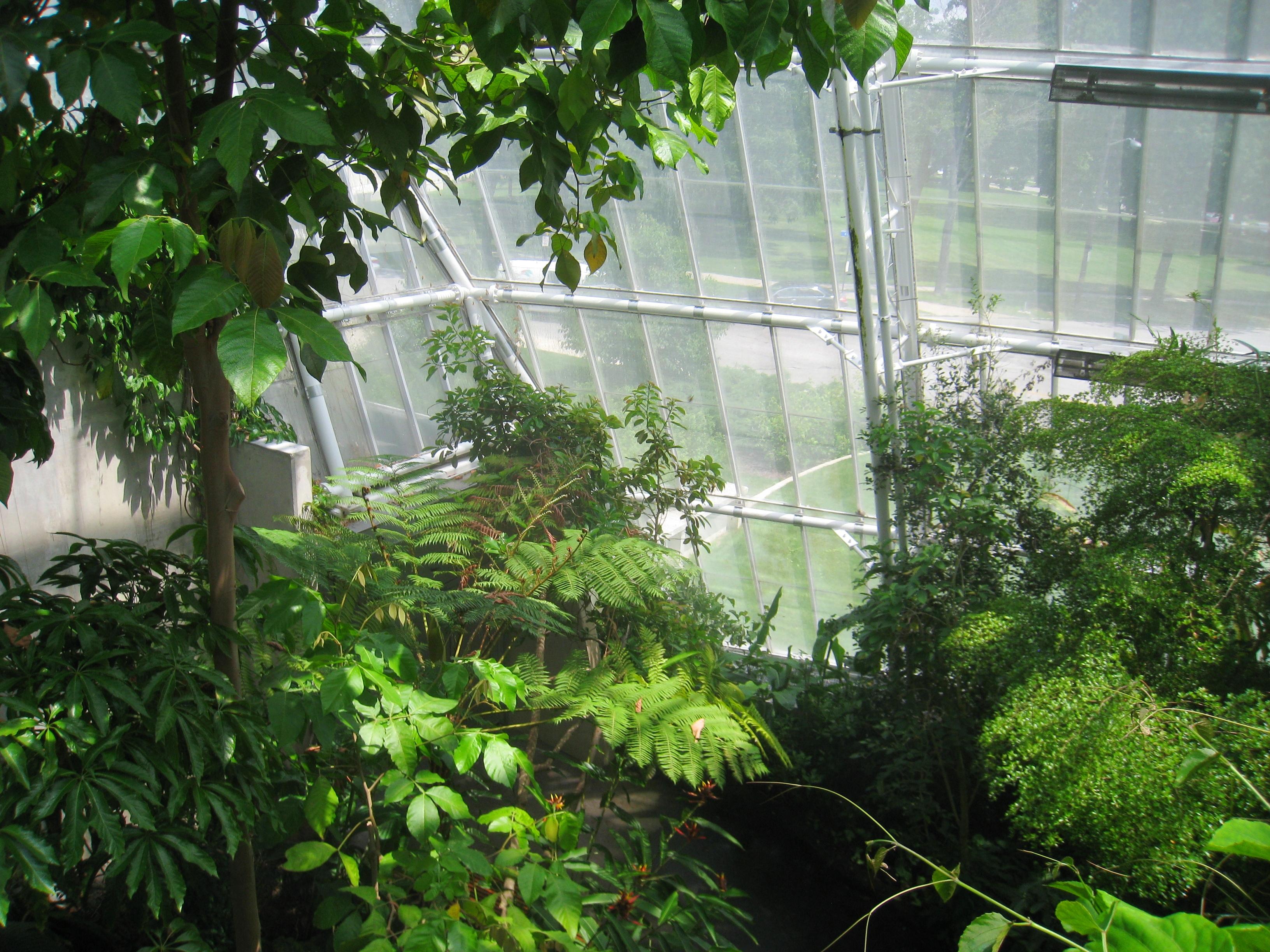 File cleveland botanical garden interior for Indoor botanical gardens