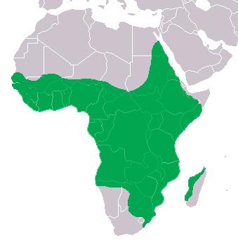 Distribución del cocodrilo del Nilo