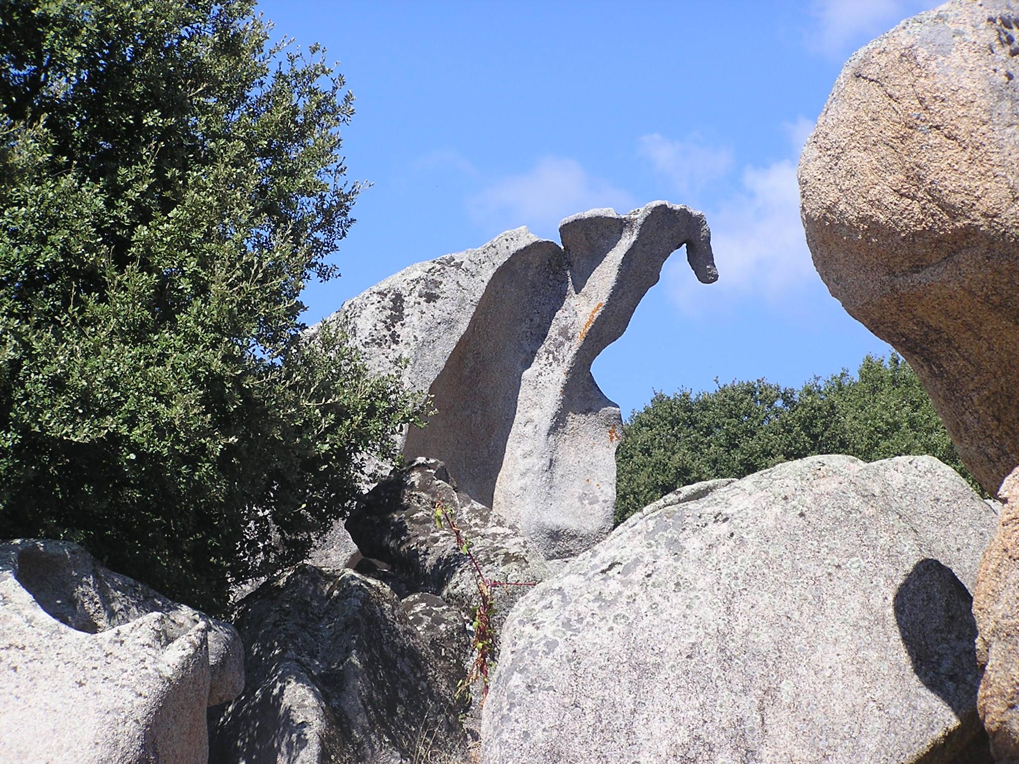 Foto Dinosaurus