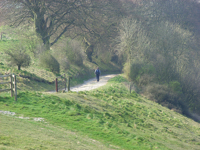 Footpath, Pilot Hill - geograph.org.uk - 403585