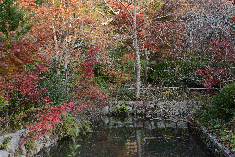File:Garden in Japan, near Osaka.JPG - Wikimedia Commons