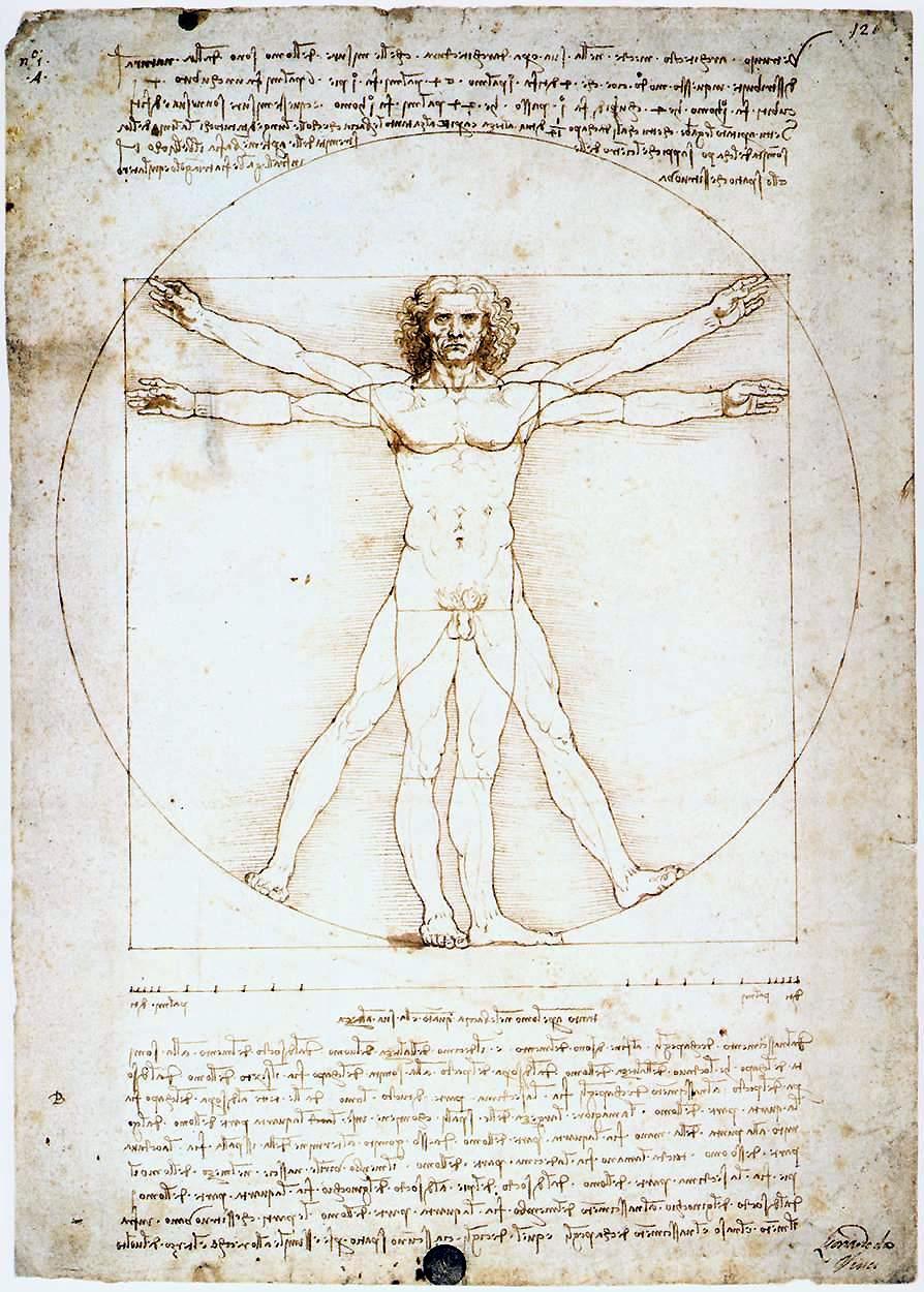 Leonardo da Vinci- Vitruvian Man.JPG