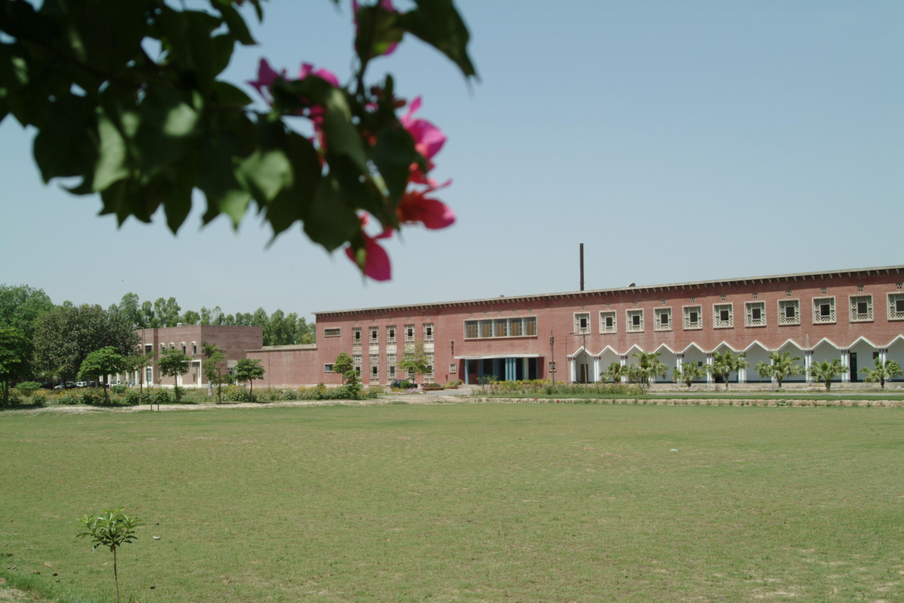 National Textile University Wikiwand