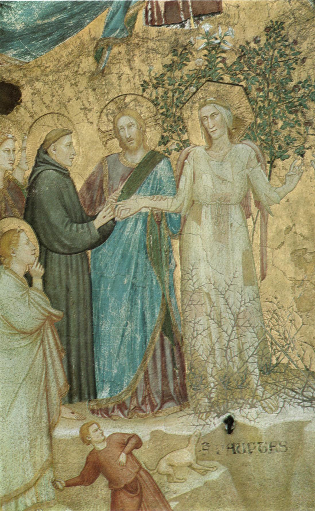 Francesco d'Assisi nel Paradiso di Dante