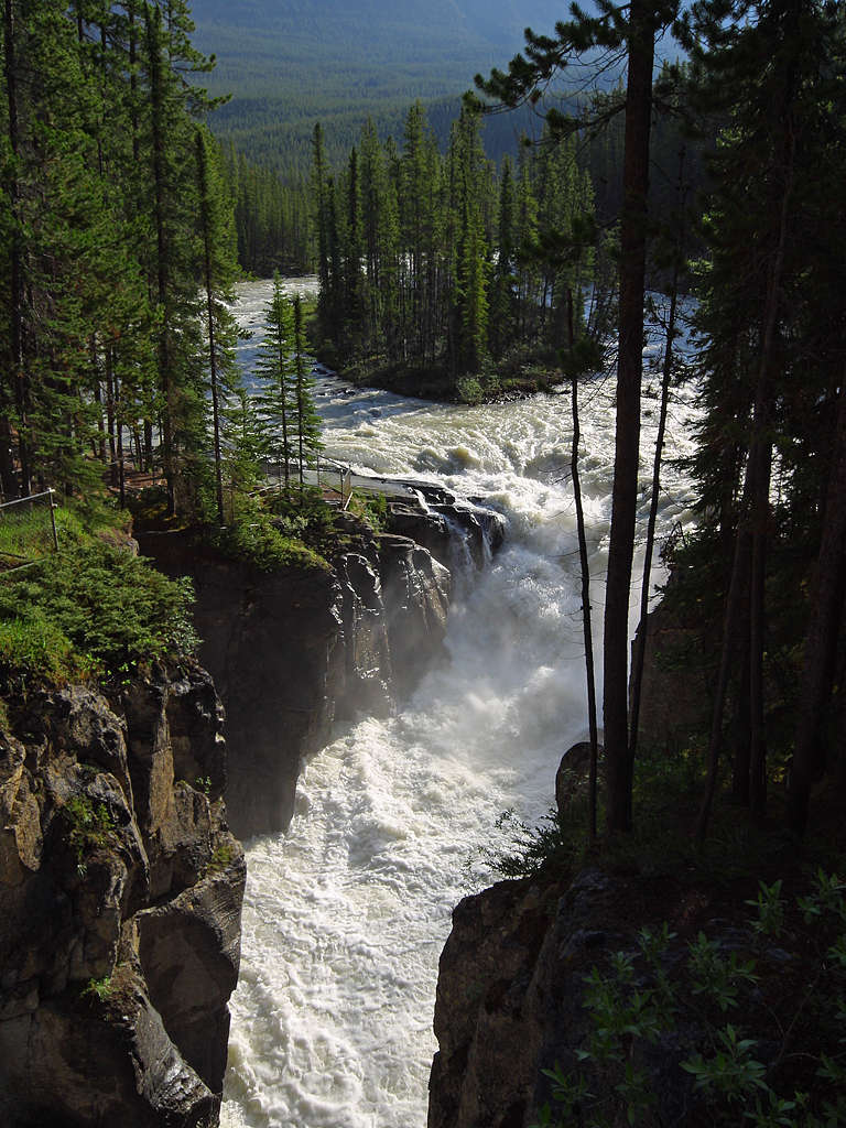 Sunwapta Falls,  Jasper National Park, Canada.