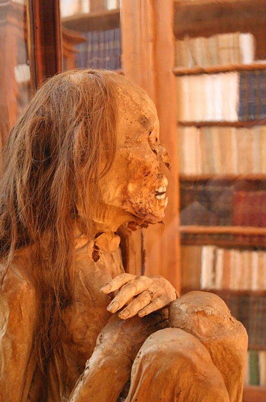 https://upload.wikimedia.org/wikipedia/commons/a/a5/Peruvian_mummy.jpg