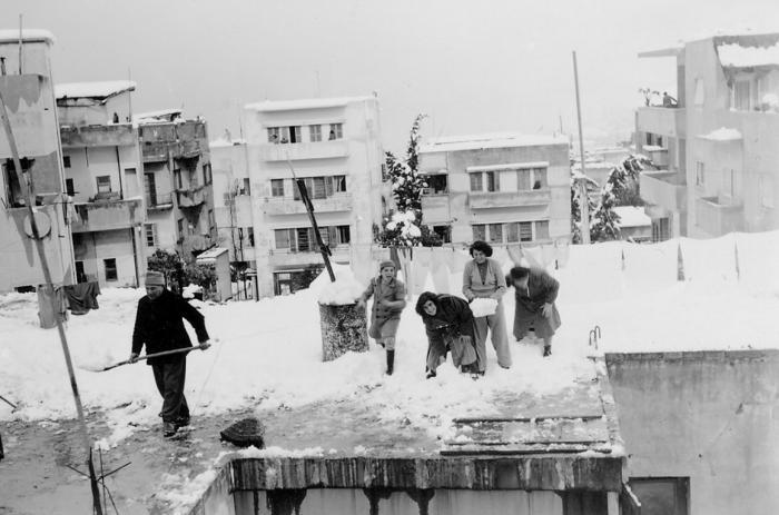 שלג בחיפה בראשית 1950
