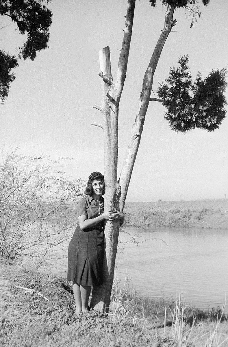 חיבוק העץ
