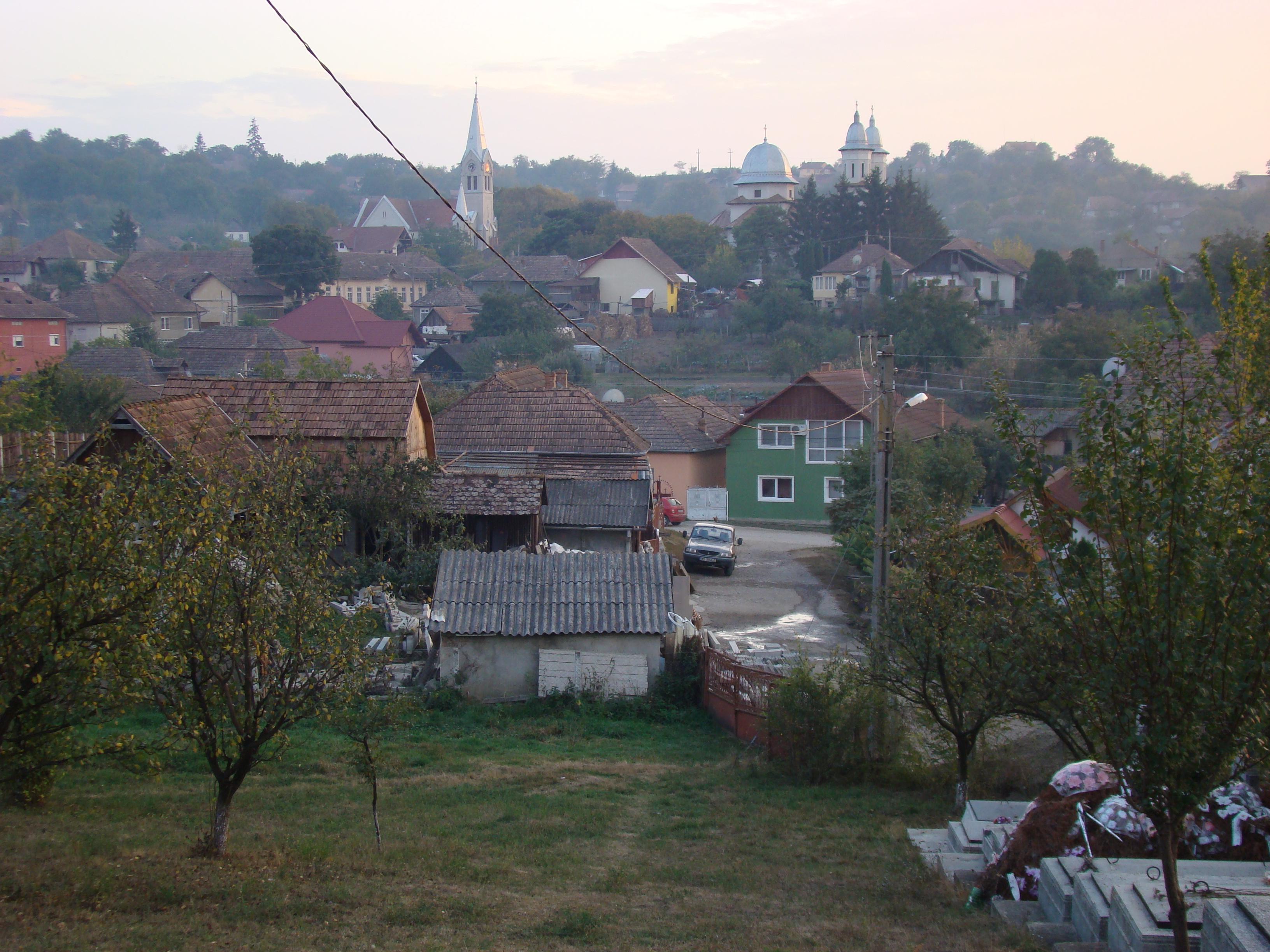 barbati din Timișoara care cauta femei frumoase din Alba Iulia matrimoniale femei singure nr telefon