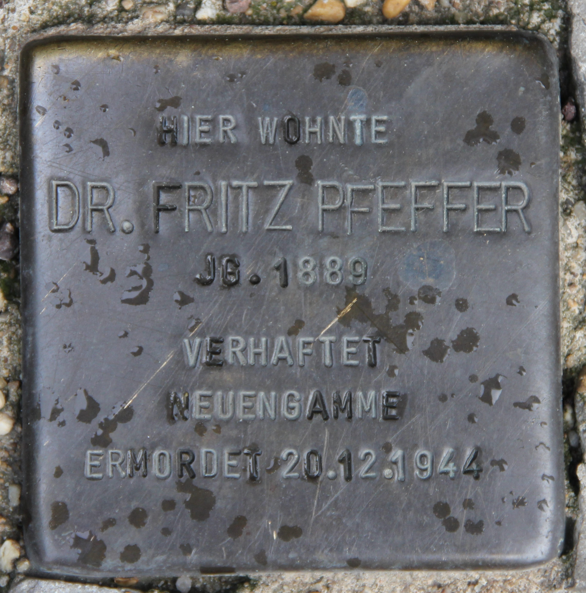 https://upload.wikimedia.org/wikipedia/commons/a/a5/Stolperstein_Lietzenburger_Str_20b_%28Sch%C3%B6nb%29_Fritz_Pfeffer.jpg
