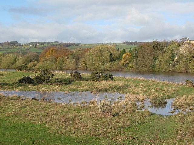 The River Tyne at Corbridge - geograph.org.uk - 1589460