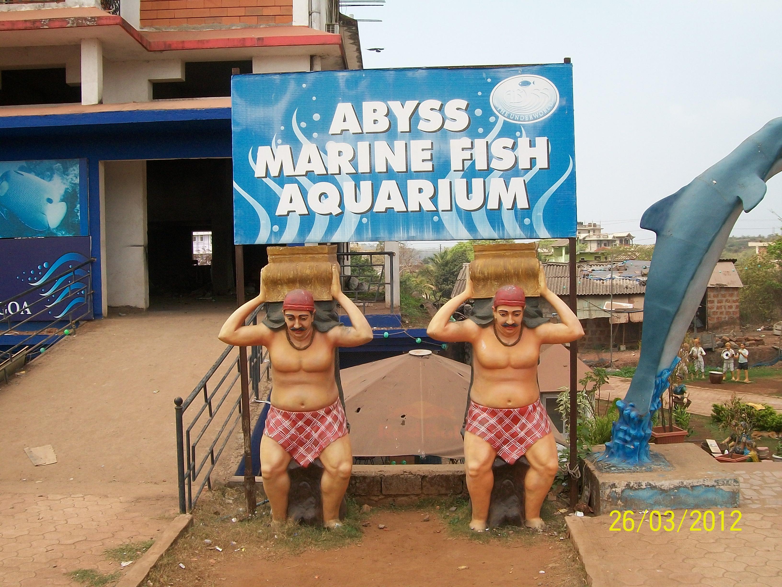 File Abyss Marine Fish Aquarium At Ssv Antique Mardol Panoramio