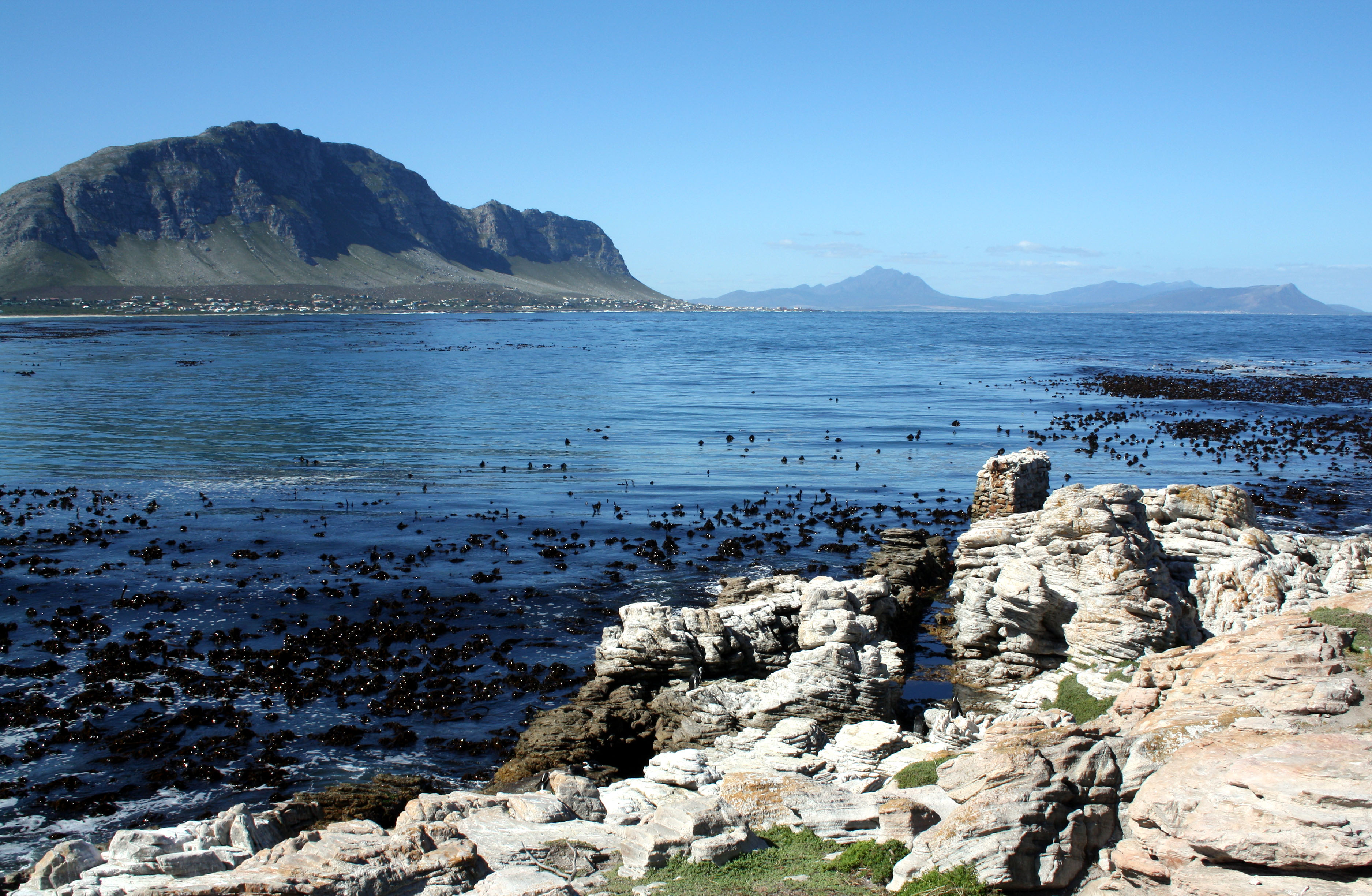 Filebettys Bay South Africa Wza Jpg Wikimedia Commons