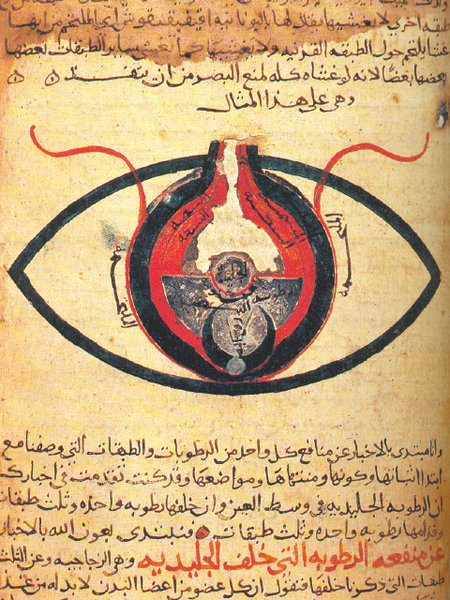 Islamic golden age wikipedia the eye according to hunain ibn ishaq from a manuscript dated circa 1200 fandeluxe Gallery