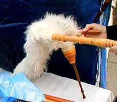 Resultado de imagen para romanian bagpipe