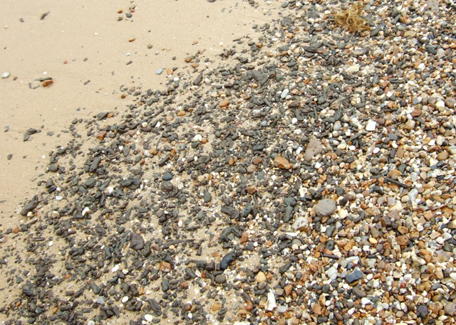 Detail Of Beach Material C The Naze Geograph Org Uk