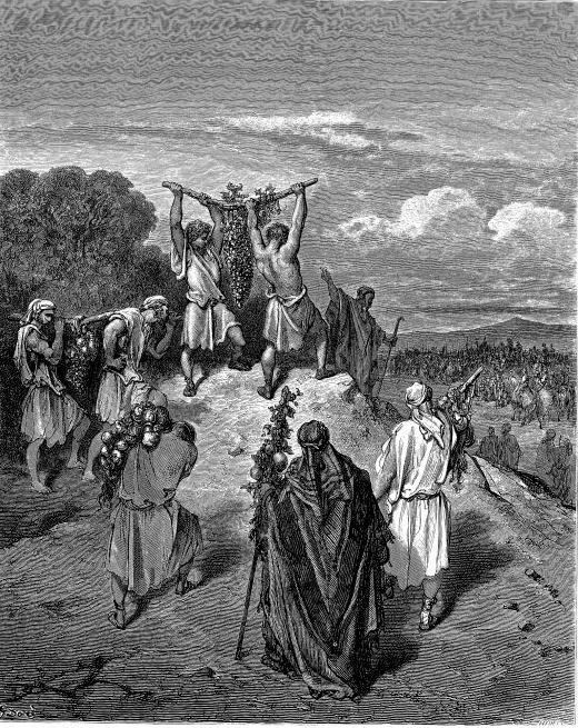 모세와 가나안에서 돌아온 정탐꾼 (조반니 란프란코, 1621~1624년)