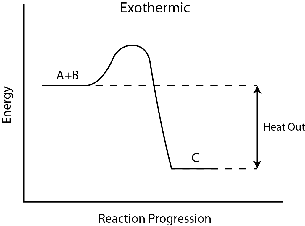 File:Exothermic Reaction.png - Wikimedia Commons