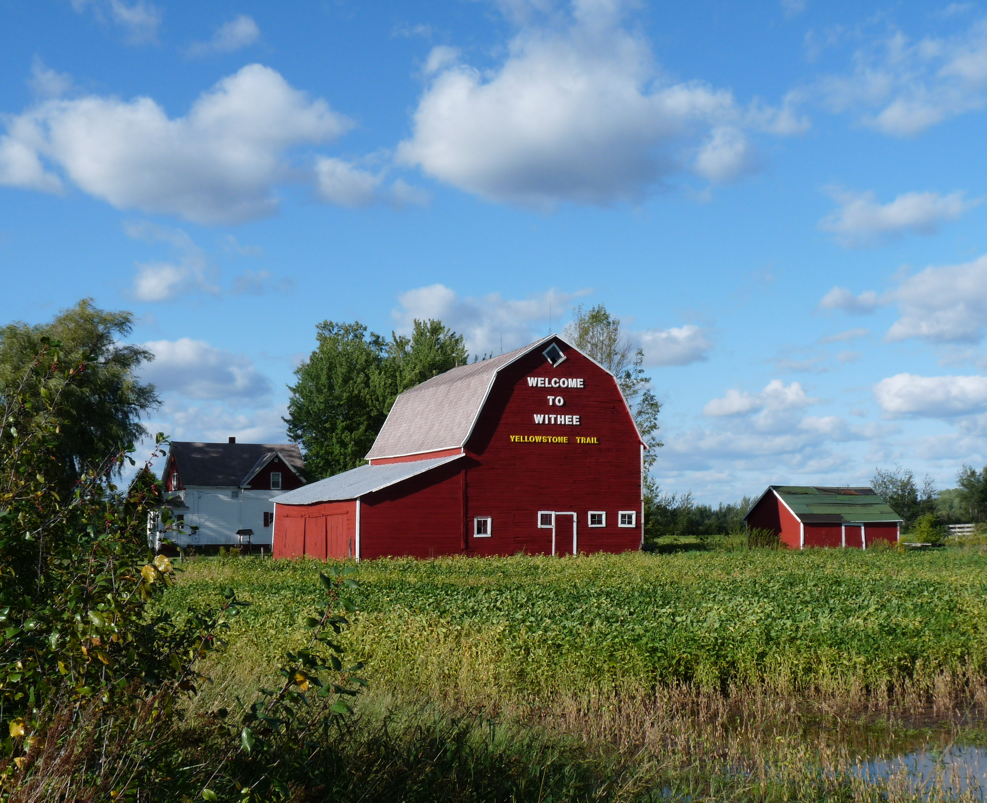 Farm south of Withee, Wisconsin. Wikipedia image