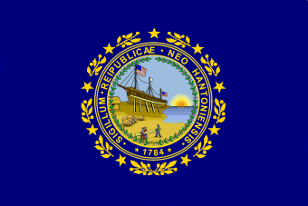Image Result For Nh State Flag