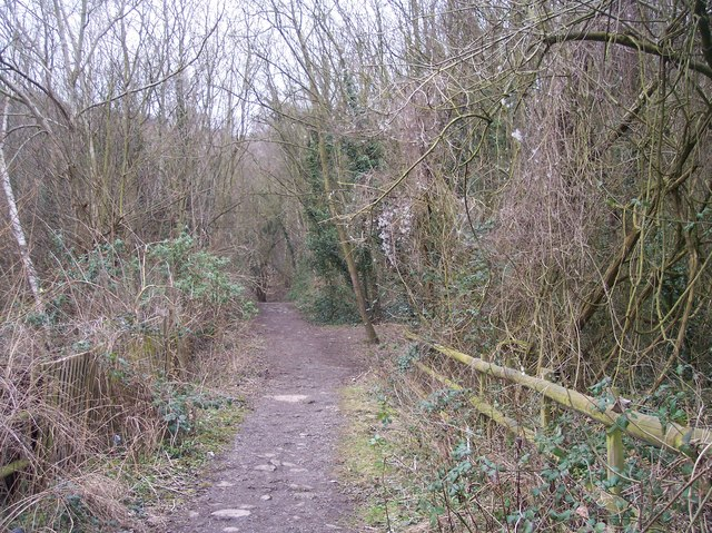 Footpath up Robins Wood Hill - geograph.org.uk - 137998