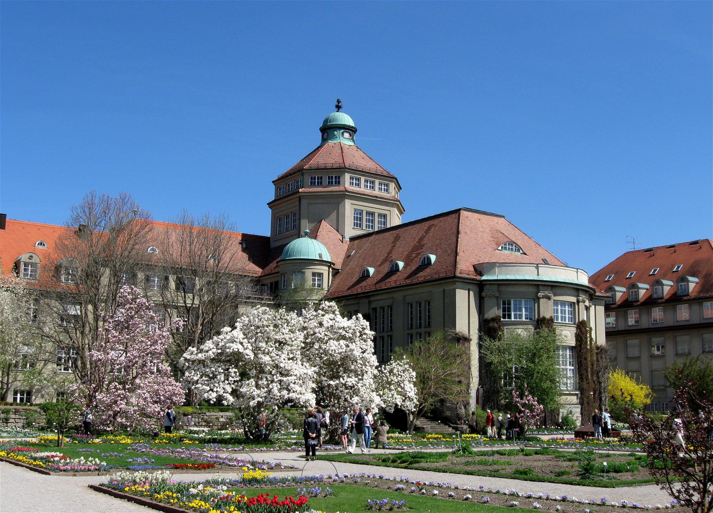 File:Fruehling Im Botanischer Garten Muenchen-2.jpg