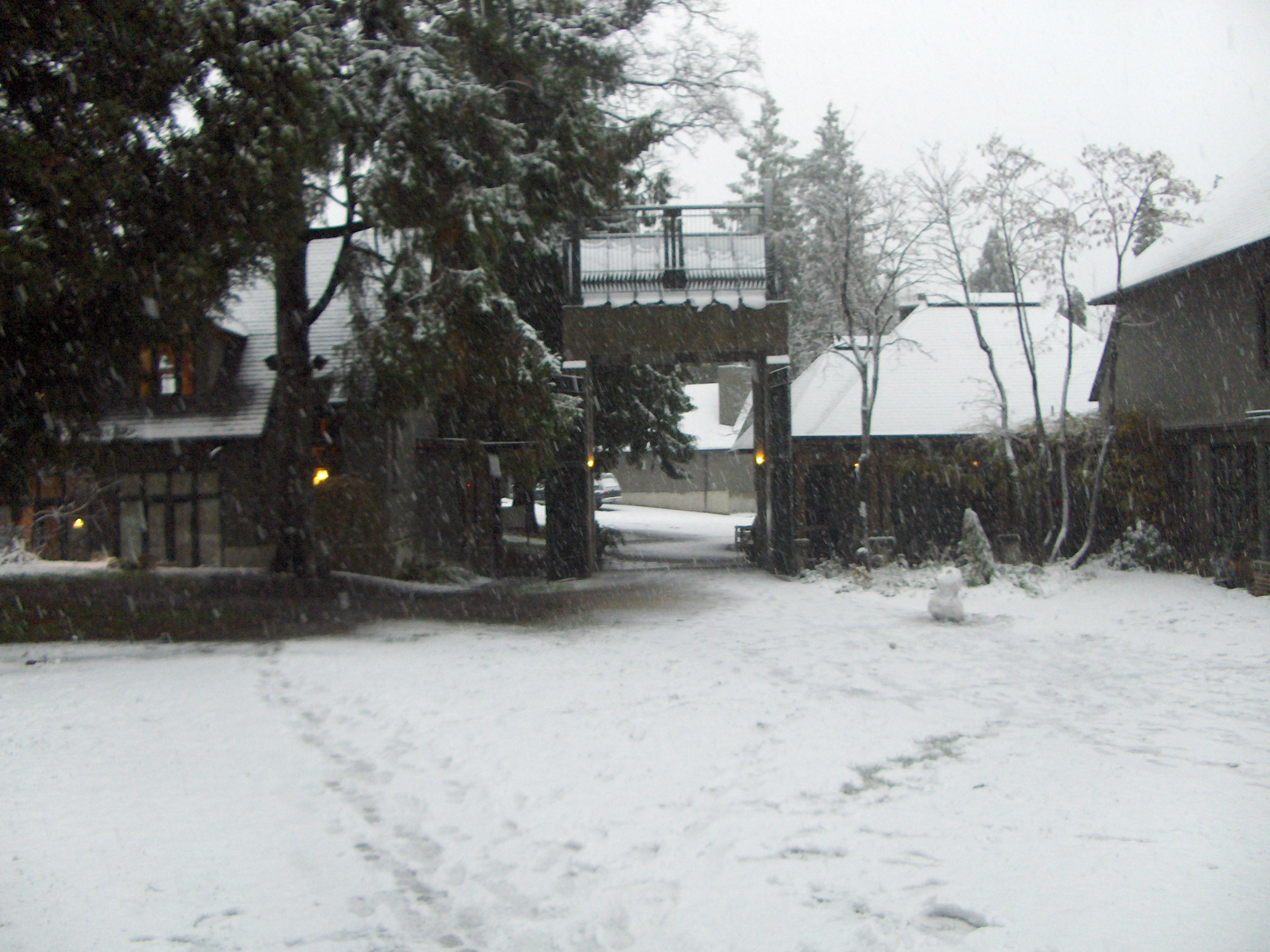 Green College University Of British Columbia