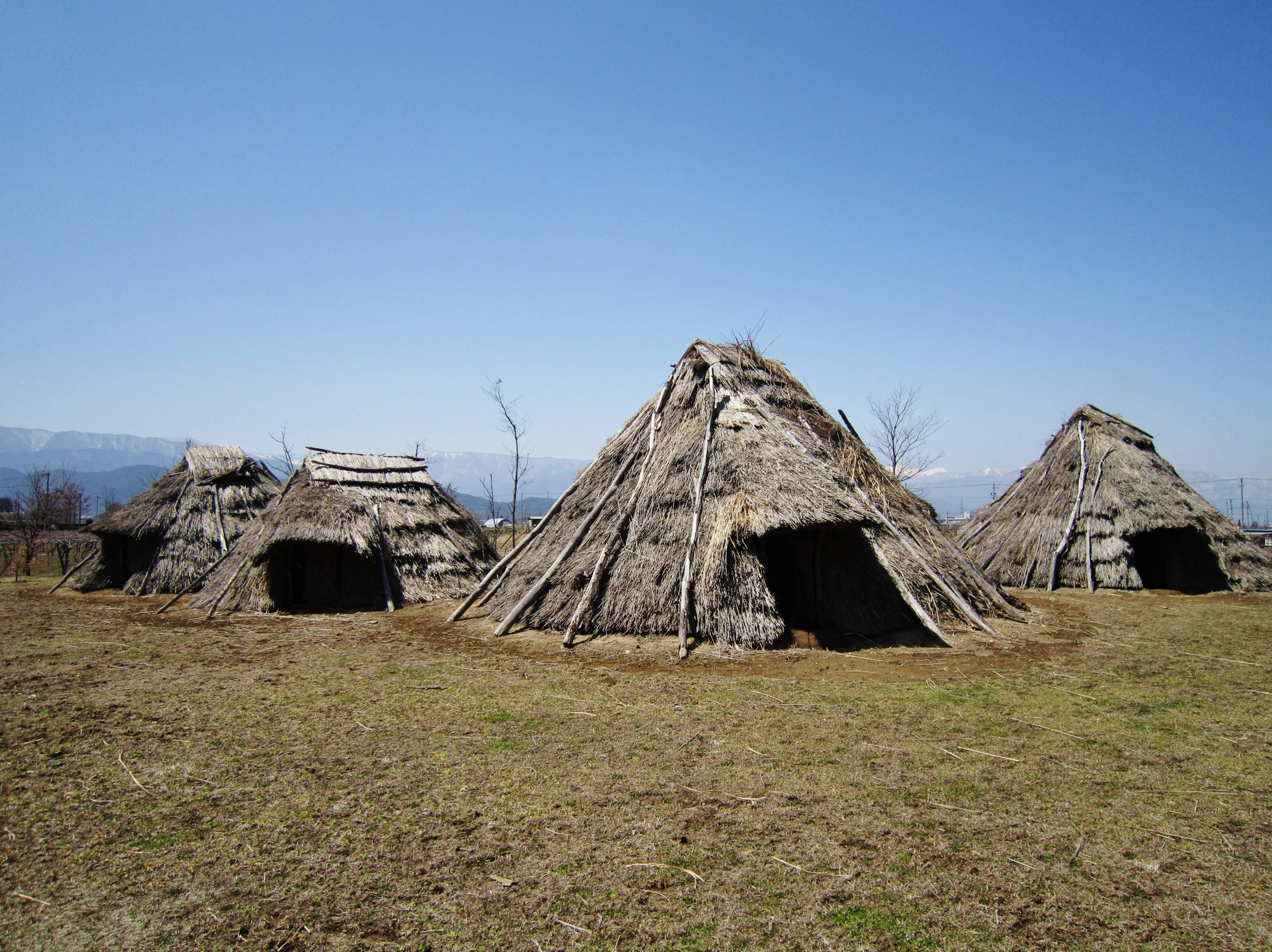 древние жилища человека картинки были самцы, грив