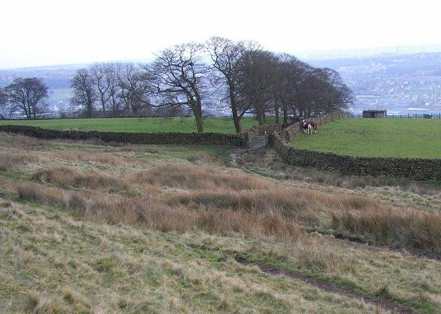 Hope Gate, Baildon Moor - geograph.org.uk - 341830